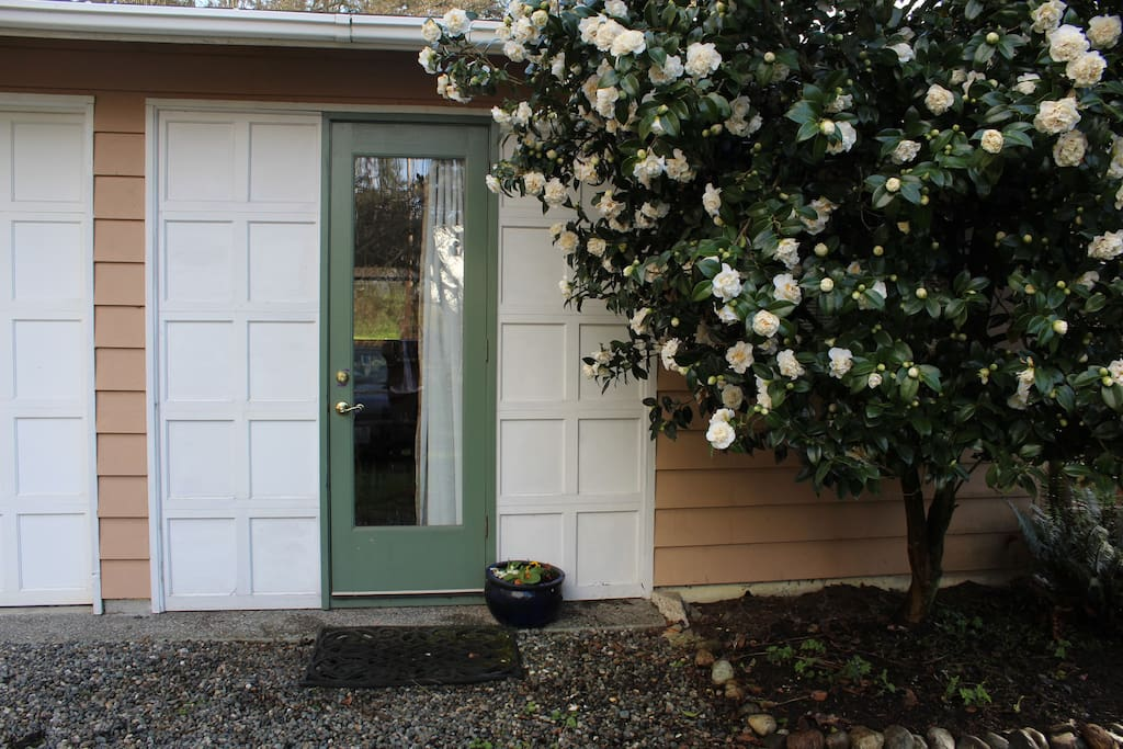 Apartments On South Whidbey Island