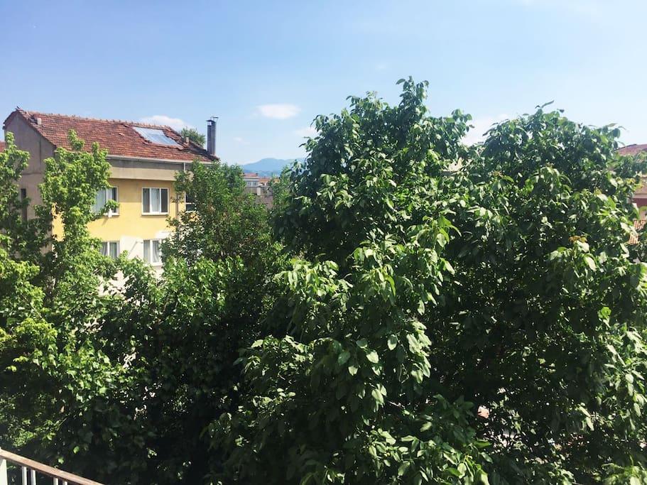 Wonderful balcony view.