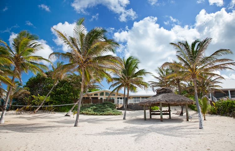 Sea Grape: Family Beachfront Villa in Rum Point w/ Private Pool & Excellent Snorkeling