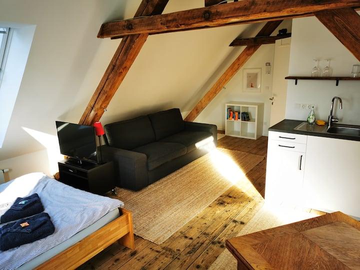 Gemütliche Wohnung am Stadtgarten / Recklinghausen