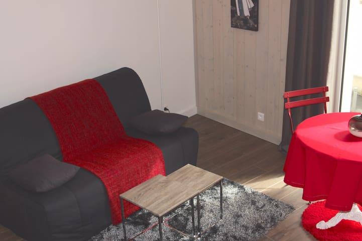 canapé lit de type BZ avec matelas confort. Draps, couverture, oreillers fournis
