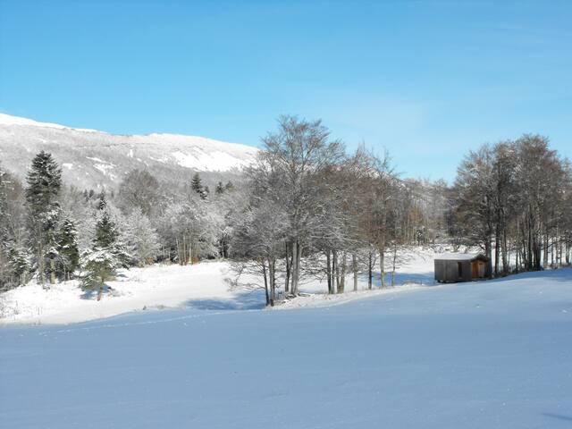 Cabanes en forêt à la montagne