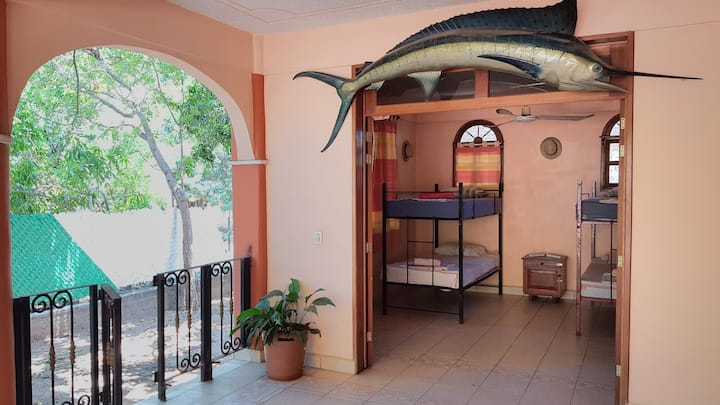 Backpackers 4-Bed-Dorms (Bunkbeds) - Villa Mango