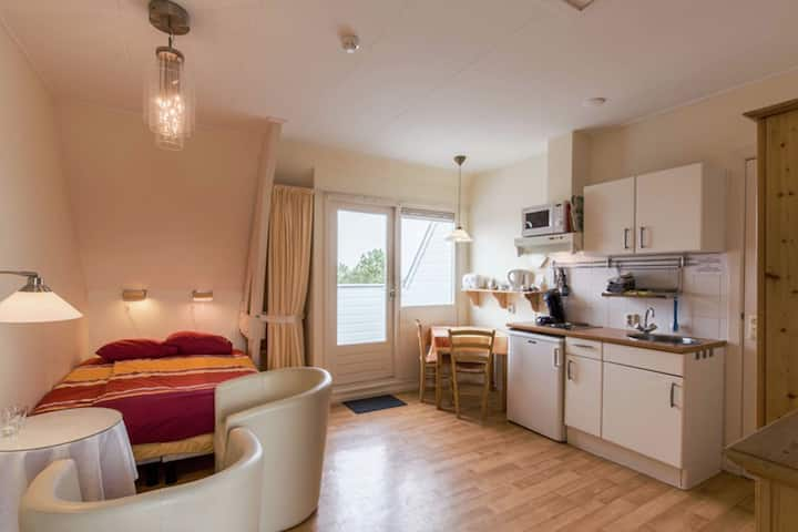 Uniquely located studio with own balcony, on a large estate in Bergen aan Zee
