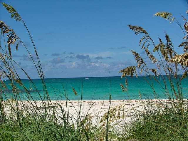 Secluded, charming 1 bdrm beachfront cottage