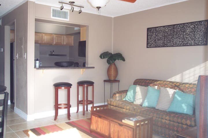 Quiet Affordable Condo on South Padre Island, TX - South Padre Island - Pis