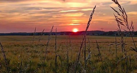 Seele baumeln lassen beim Sonnenuntergang