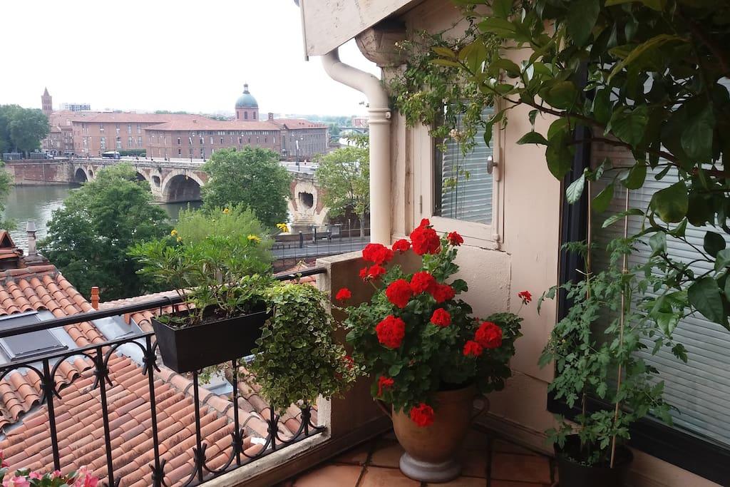 Une des plus belles vues de Toulouse sur la Garonne et les Pyrénées!