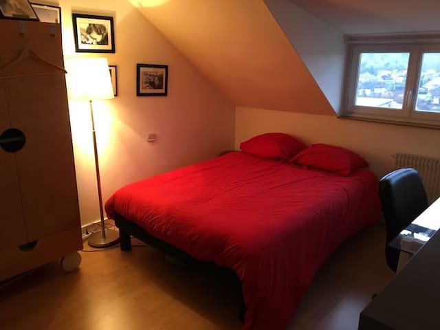 Maison en plein ❤️ d'Angoulême - Angoulême