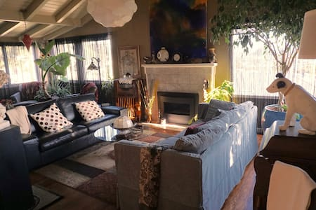 Panoramic views of SF Bay, Bright garden room - El Cerrito