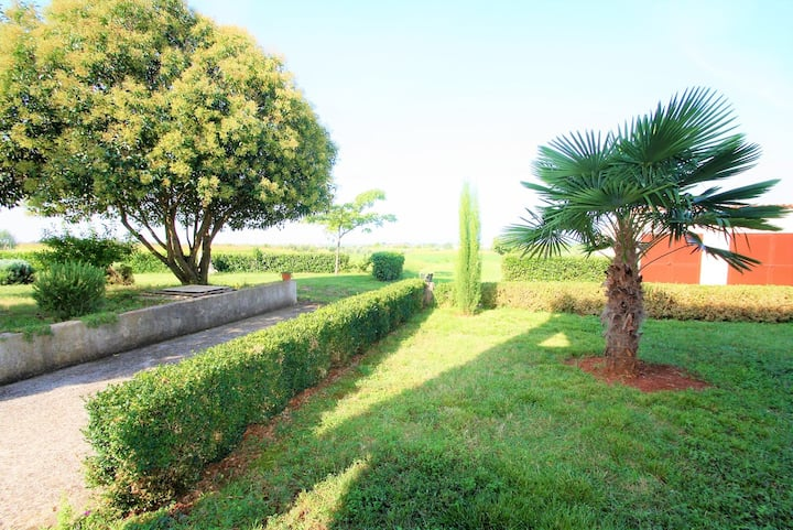 Apartments Livio Stranici with a beautiful view on the Villages around / Apartment Livio I A4 on the Ground floor