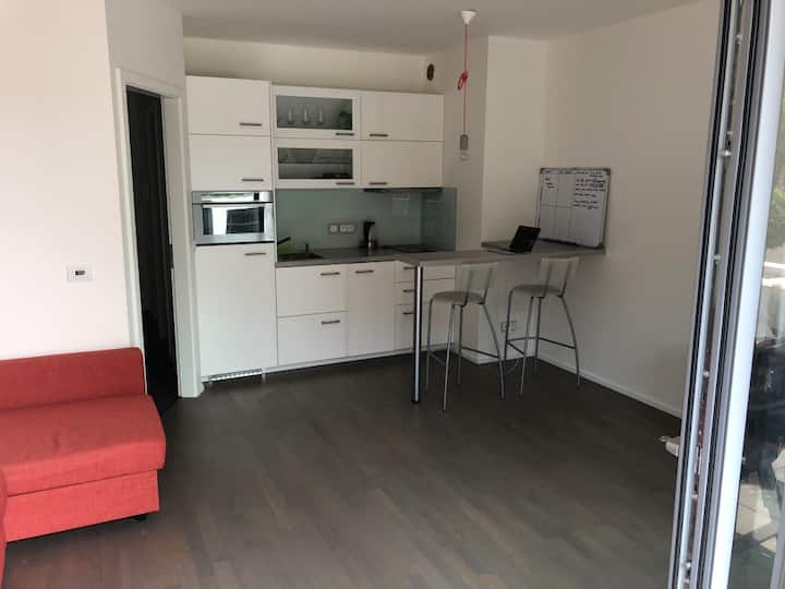 Nice apartment close to downtown