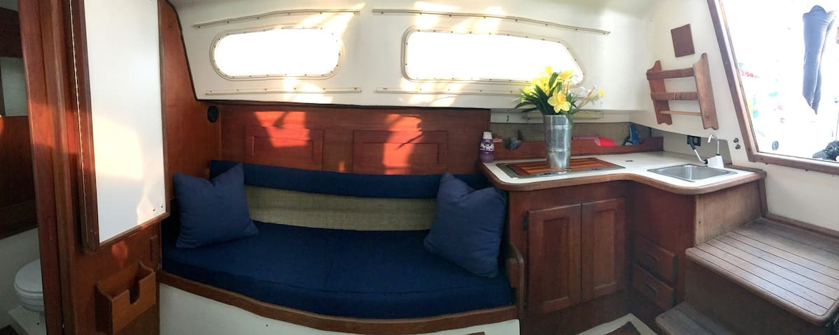 Starboard salon settee and galley.