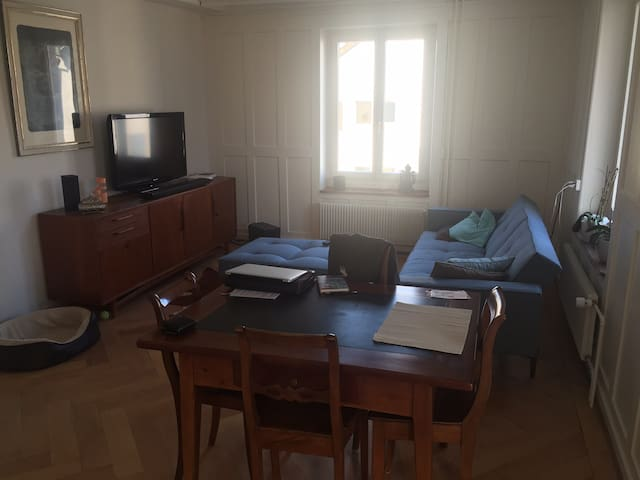 sunny, quiet apt. close to Zurich - Adliswil - Συγκρότημα κατοικιών