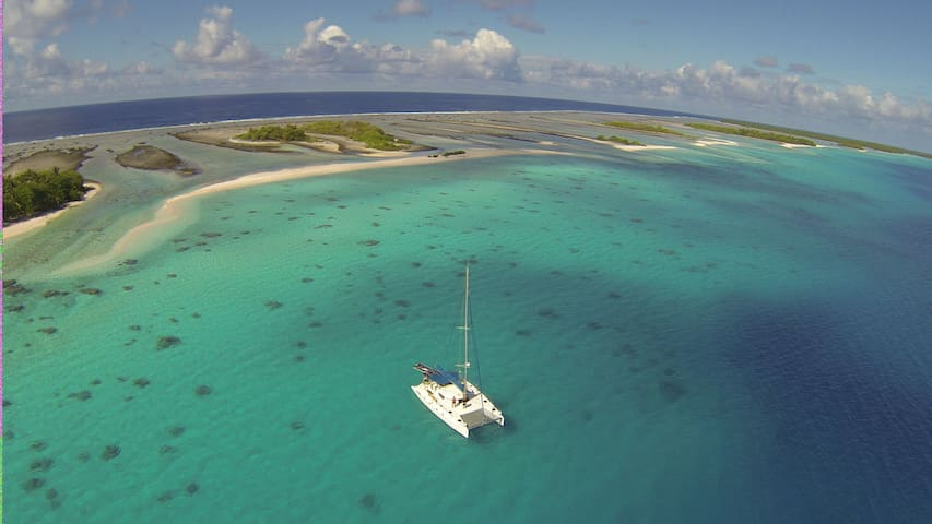 Cabin - Eco Sailing Charter All Inclusive Gourmet - Rotoava - 船