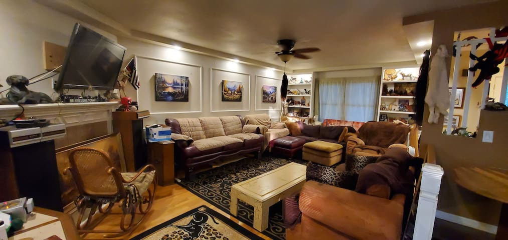 """55"""" flatscreen TV, smart Blue-Ray DVD player has netflix & other apps for your enjoyment.  Blankets are placed upon couches for easy cleaning. Large rugs cover the wood floors. A gas fireplace helps to warm the home as needed on cold nights."""