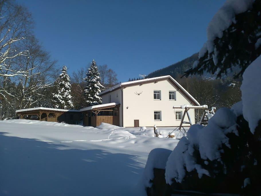 Dům a jeho okolí se zahradou.