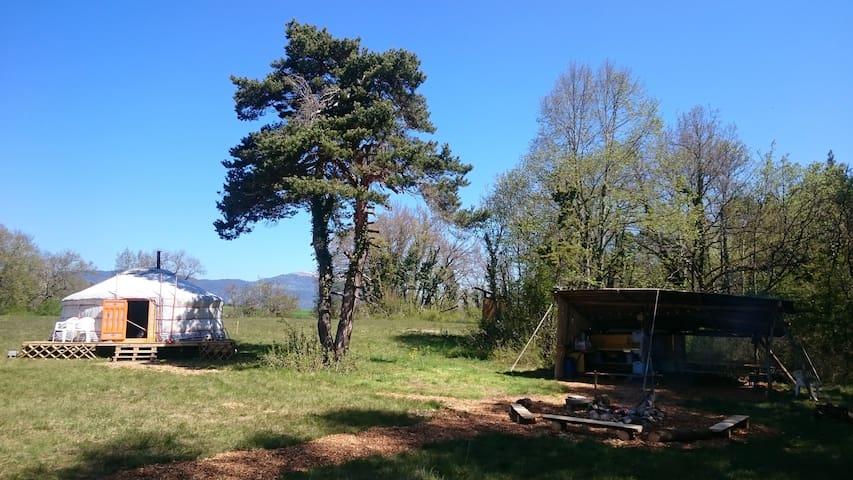 Yourte en lisière de Forêt