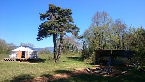 Forest Edge Yurt