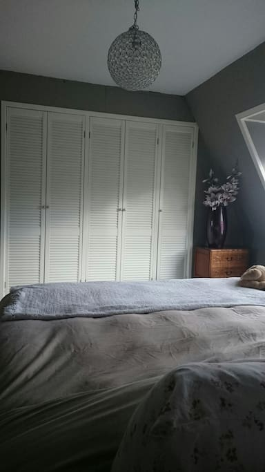 Spacious double use room with closet