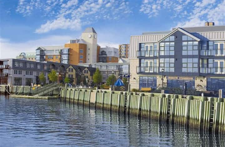 Halifax Waterfront Luxury