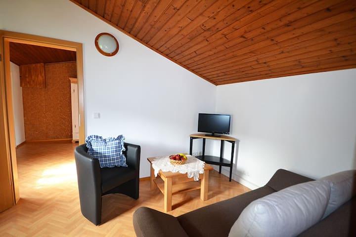 Ferienwohnung Holzhammer Hof (Bayerbach), Ferienwohnung (50qm) mit Küche und Fernseher