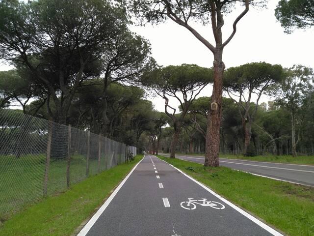 Roma arkeologic park Ostia Antica collegato metro