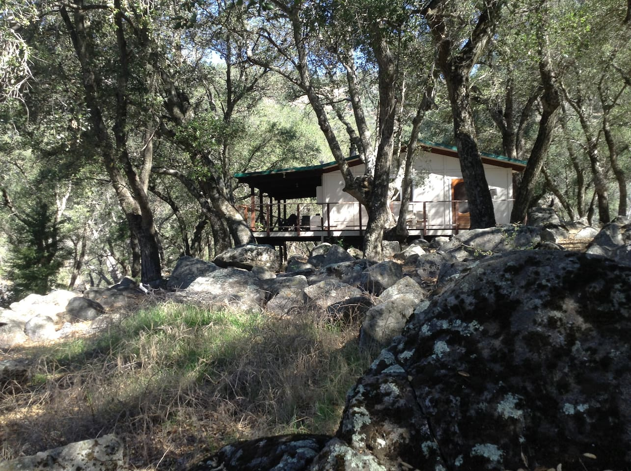 House in the Woods on the 67 Acre Ranch
