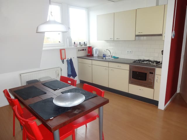 A spacious 1 bedroom apartment - Zevenbergen - Departamento