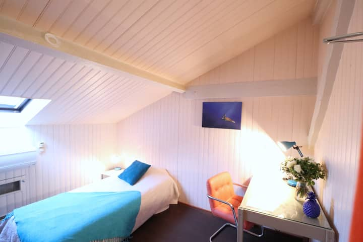 Charming room in the heart of Nice
