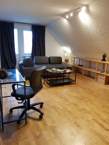 Secound livingroom with sofa bed