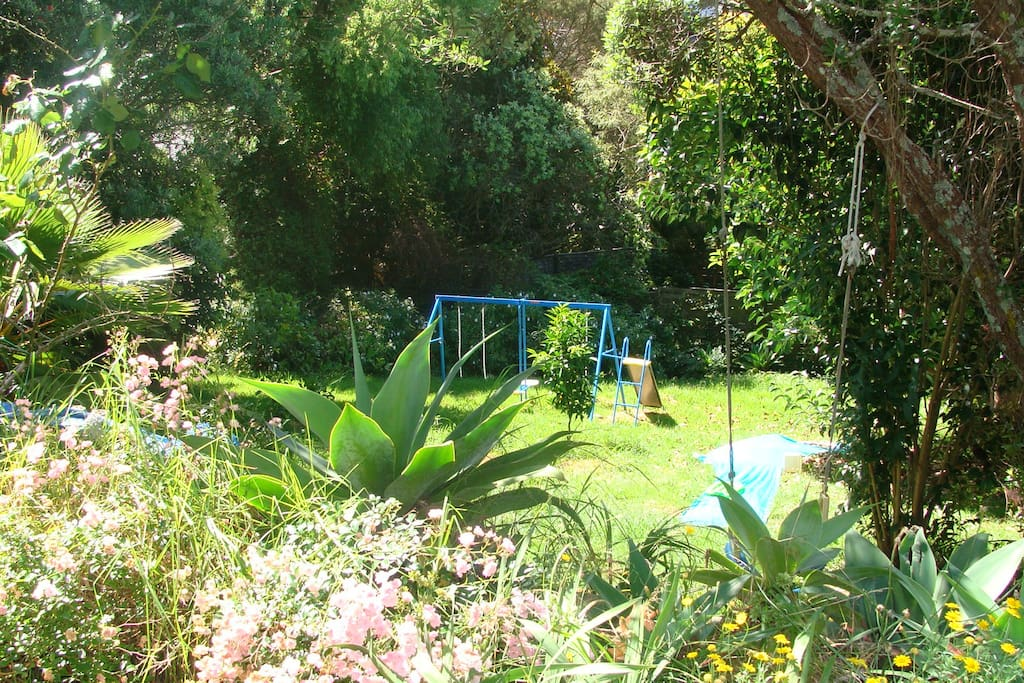 This is our large back garden.