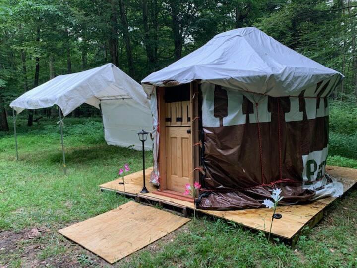 Burt The Baby Yurt!