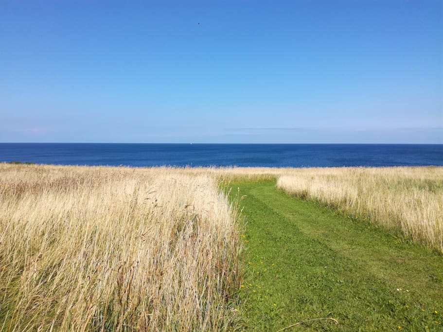 Vores naturgrund går ned til vandet (Kattegat)