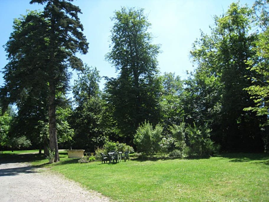 Parc 1,5 hectares