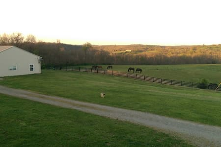 Friesian Horse Farm Bordering The Kentucky River - Harrodsburg - Hus