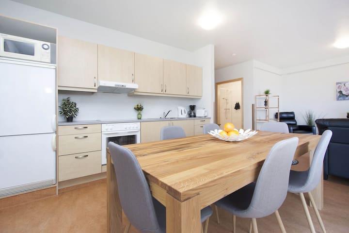 Cozy Family Private Apartment near Geysir & Gullfoss