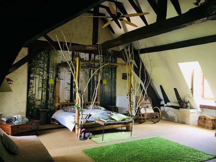Chambres La Forêt Enchantée