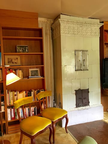 Library - functioning fireplace