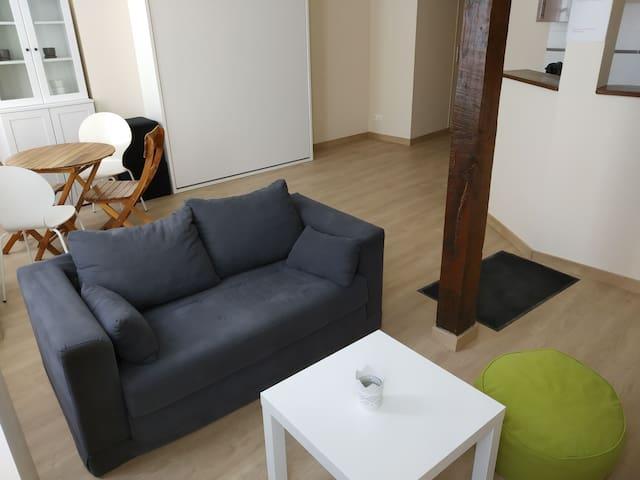 Appartement dans maison typique champenoise