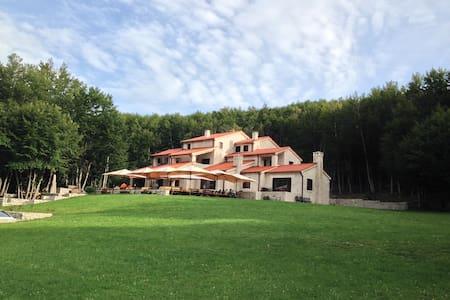 Hotel Ivanov Konak - Lovcen - Cetinje - Oda + Kahvaltı