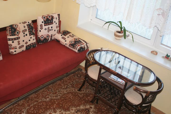 Apartment in a silent part of Prague - Prague - Appartement
