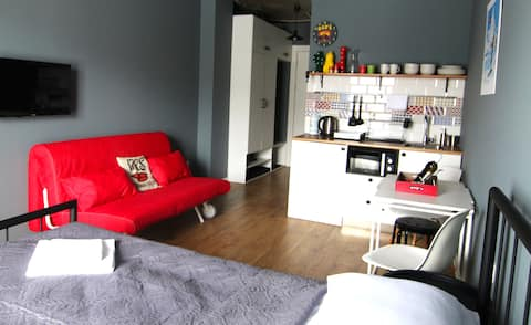New GUDAURI. Apartment in RED-CO. Loft 2