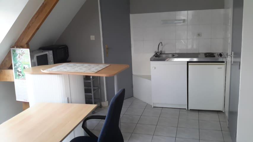 studio lumineux et spacieux - Pont-Péan - Appartement