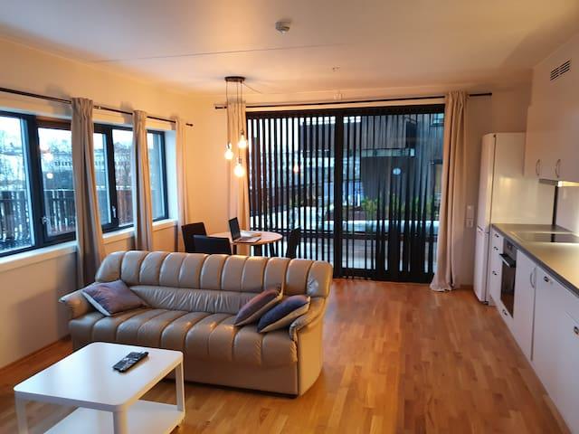 New built modern  apartment @ Kjeller