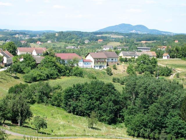 Spezialitätenhof Familie Eichmann - Neuhaus am Klausenbach - Kondominium