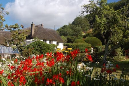 Devon longhouse with private pool close to the sea - Newton Abbot - Hus
