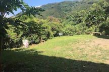 室外露營草地(水源充足)