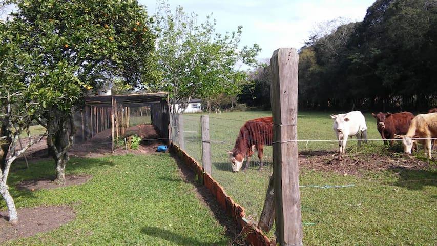 Pousada Rural Recanto Verde