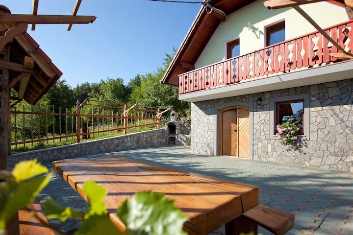 Vineyard cottage Luštek - Trška Gora - House